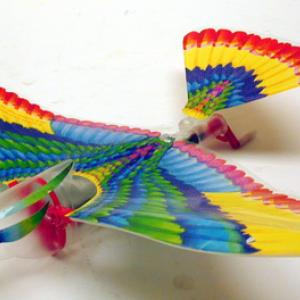 Wind the rubber band of the Ornithopter up to 50 turns.  Then press the lever on the side of the Ornithopter body to start the wings in motion and launch the bird.  If the tail is positioned correctly is should go up and circle and come back to you.