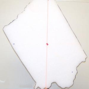 Hang the Map of the State and find the center of gravity or throw it up into the air and observe it rotating about the center of mass.