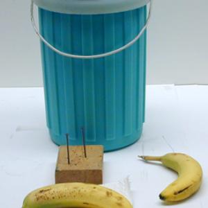 Typically it takes about 4 liters for each classroom demonstration.  Freeze a banana and you can drive nails with it.  The fibrous nature of the banana keeps it from breaking apart easily.